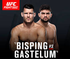 The Replacement Kelvin Gastelum Michael Bisping Fight U0027definitely U0027 Bigger Than