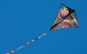 amazon com prism stowaway diamond kite fusion sports u0026 outdoors