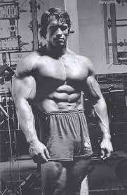 arnold schwarzenegger the best gallery of this bodybuilding icon