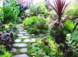 fun garden ideas for kids house type plus home gardening images