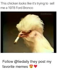 Bronco Memes - this chicken looks like it s trying to sell me a 1978 ford bronco