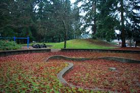 Lincoln Park Seattle Parks Hikes by Northacres Park Best Seattle Parks