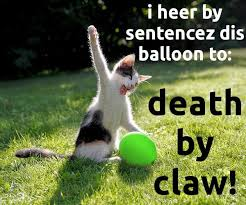 Balloon Memes - maze op art cat balloon maze n memes