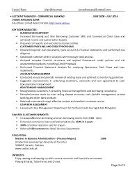 Banking Project Manager Resume Teenage Pregnancy Persuasive Essay Civilization Critical