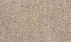 brown shag rug review top area rugs online