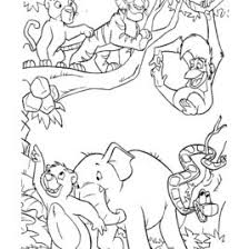 coloring jungle kids drawing coloring pages marisa