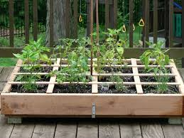 534 best container vegetable gardening images on pinterest