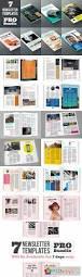 newsletter pro bundle 345034 free download photoshop vector