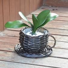 brown tabletop basket cup shape waterproof wicker flower plant pot
