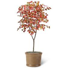 artificial tree maple leaf 7 ft t x 4 ft in black grow plast