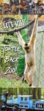 Turtle Back Zoo Lights by The Jersey Momma A Review Of The Turtle Back Zoo Classic New