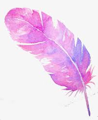 purple feather purple feather violet feather pink png image and clipart for