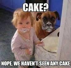 Cake Meme - cake meme