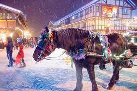 Washington Christmas Tree Farms - christmas christmas snowy peaks tree farm casnowy black excelent