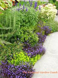 375 best garden beauty yellow purple blue combinations images on