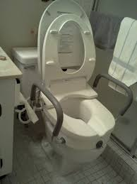 Toilet With Bidet Seat Bidet Toilet Seat By Brondell Installed With Roscoe Raised Toilet