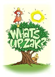 bible stories for zacchaeus up a tree
