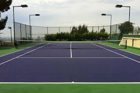 Backyard Tennis Courts Triyae Com U003d Grass Tennis Court In Backyard Various Design