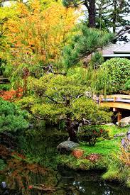 the graceful gardener the japanese tea garden in golden gate park