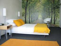 decorating bedroom wall murals for bedrooms paint colors for