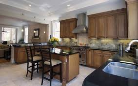 wood stain kitchen cabinets dark stained kitchen cabinets interesting image of wood design