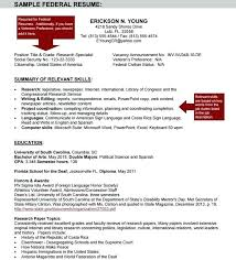 federal resumes sle federal government resume sle federal resume sle
