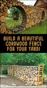 best 25 living fence ideas on pinterest hedge fence ideas