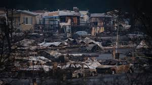 California Wildfires Pets by 36 Dead 200 Plus Missing In California Wildfires