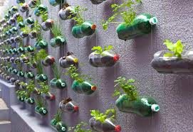 kitchen garden ideas vertical vegetable garden ideas corner