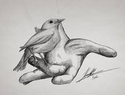 bird on hand drawing by thekenned on deviantart