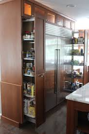 Kitchen Cabinets Refrigerator Surround by 18 Best Refrigerator Images On Pinterest Dream Kitchens Kitchen