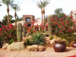 arizona landscaping ideas landscape designs photo gallery