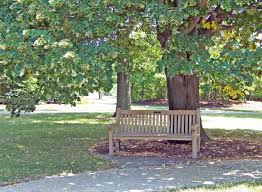 park bench free stock photo public domain pictures