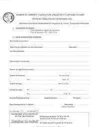 inscription chambre de commerce eregulations niger
