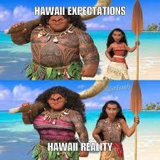 Hawaii Meme - the best hawaii memes memedroid