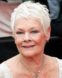 judi dench hairstyle front and back of head 14 best haircuts 4 me images on pinterest judi dench short