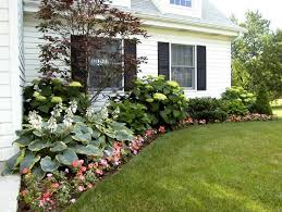Front Of House Landscaping Ideas by Front Yard Ranch Style House With Hydrangeas Outdoor Landscaping