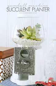 diy succulent amazing diy succulent crafts that will beautify your home