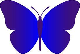 papillon clipart cute butterfly outline pencil color