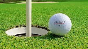 titleist maker teed costco s cheap golf balls