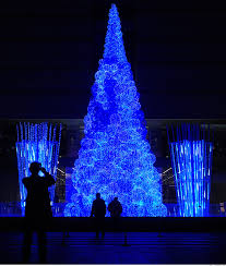 beijing s fiber optic tree as seen at http www luxist