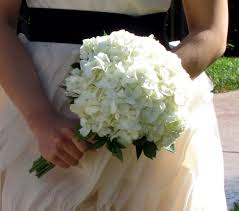 hydrangea wedding bouquet white hydrangea wedding bouquet products local florist in san