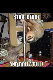 Funny Stripper Memes - 17 best funny sloths images on pinterest funny stuff sloth memes
