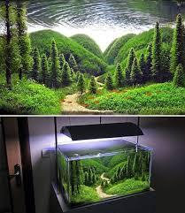 Aquascape Designs For Aquariums Best 25 Aquarium Design Ideas On Pinterest Aquarium Aquarium