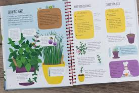 Gardening For Beginners Vegetables by Gardening For Beginners U2013 Peek Inside U2013 Usborne Books U0026 More