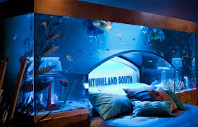 Aquarium Bed Set Bedroom Bedroom Fish Tank 43 Bedroom Sets Bedroom Aquarium Http