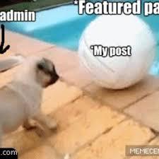 Puppy Face Meme - sad puppy face by recyclebin meme center