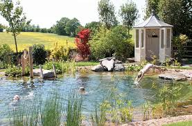Backyard Swimming Ponds by Never Mind Pools Make A Splash With Your Own Swimming Pond