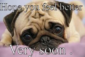 Feel Better Meme - hope you feel better meme google search greeting cards get