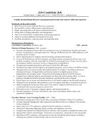 Human Resource Director Resume Sample Resume Cover Letter Promotion